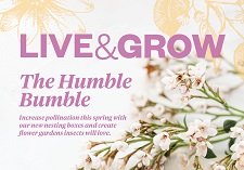 Live, Grow, Issue 41
