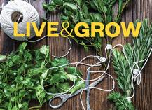 Live, Grow, Issue 44